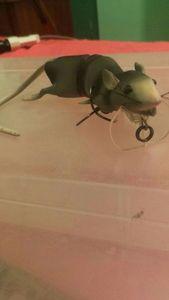Lures Savage Gear 3d Rat  - Grey