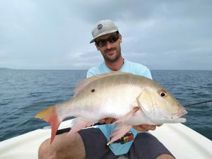 Vivaneau Sorbe — Guillaume pêche Guadeloupe