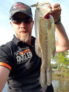 Largemouth Bass — Eric PELE