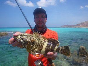 Malabar Grouper — Nicolas Xmylife Rodmaps