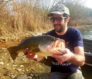 Largemouth Bass — Eugenio Boggio Marzet