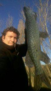 Northern Pike — Sylvain Flassayer