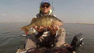 European Perch — Franck Kayak Fishing