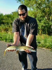 Northern Pike — Аnthony Jacquemin