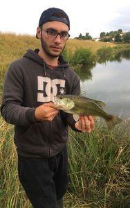 Largemouth Bass — Raphael Gomes
