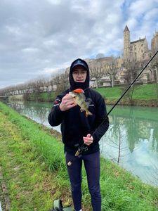 European Perch — Quentin Ferres