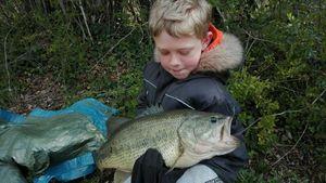 Largemouth Bass — Nicolas CETRE