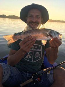 European Bass (Seabass) — Benoît Gros