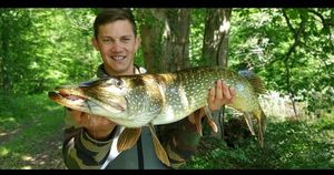 Northern Pike — Hugo Mariotte
