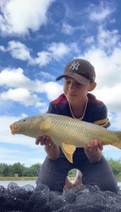 Common Carp — Fish tim