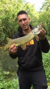 Brochet — dod$ale fishing