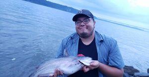Blue Catfish — Blake Nizialek