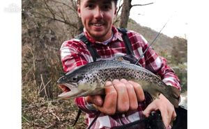 Brown Trout — Maxime Tourrisseau