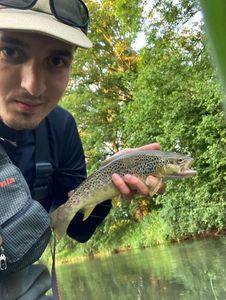Common Trout