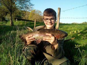 "Rainbow Trout — Joris Massire ""Fisheart"""