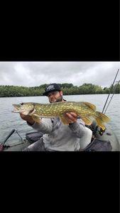 Northern Pike — Eli Levy  team no-killeurre carna