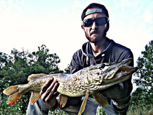 Northern Pike — CarnaFiF Fishing