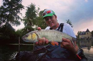Chub — Ephory Fishing