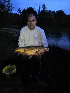 Common Carp — Tom Mureau