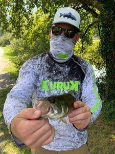 Largemouth Bass — Timi Fi-sh
