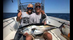 Bluefin Tuna — Tanguy Marlin