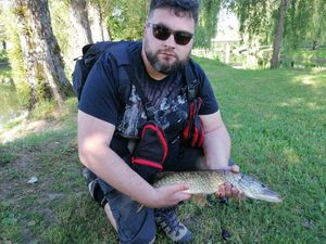Northern Pike — Nicolas Durand