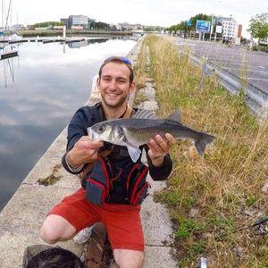 European Bass — Fishing For You