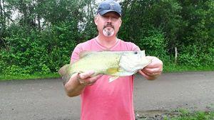 Black Bass (Achigan à Grande Bouche) — Fisherman Olo