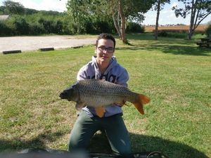 Common Carp — Damien De Carvalho