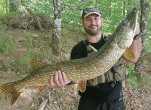 Northern Pike — Loïc GENDRE