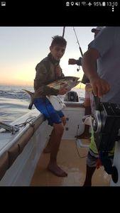 Yellowfin Tuna — Chris Haase