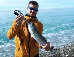 Bluefish — El Florinho