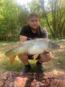 Common Carp — Arnaud Lecomte