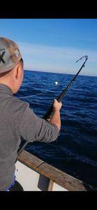 Southern Bluefin Tuna — Adrien Fisherman
