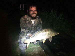 Common Carp — Jérémy Bercher