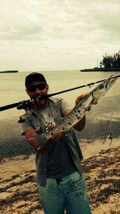 Great Barracuda — Malix Grant Returns