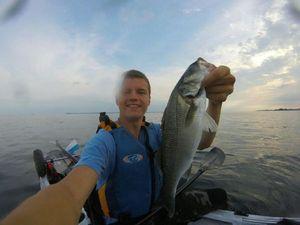 European Bass (Seabass) — Maxime Gueguen