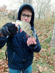 European Perch — Tristan Giudice