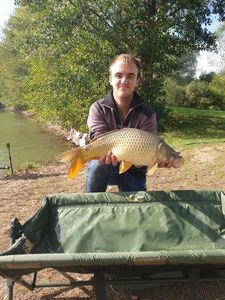 Common Carp — Charly Gasnerie