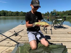 Tench — Fish tim