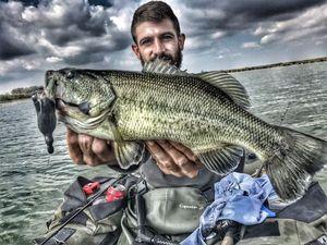 Largemouth Bass — Xavier Diolot