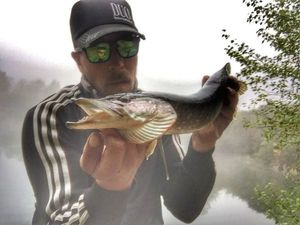 Northern Pike — Douving Fishing