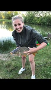 Common Carp — Alice Ternisien