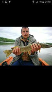 Northern Pike — Yohann Monnot