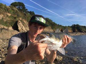 European Bass — Hugo Granjon mdlt