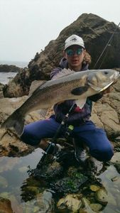 European Bass — Melv Fishing