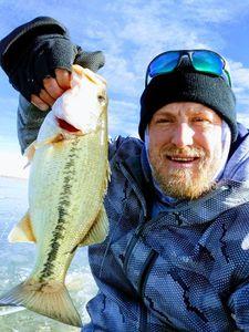 Largemouth Bass — William Daniel