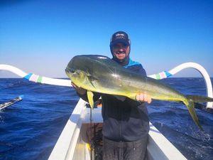 Dolphinfish — french strikefishing