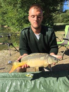 Mirror Carp — Charly Gasnerie