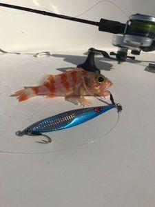Redfish — Karukera Déso